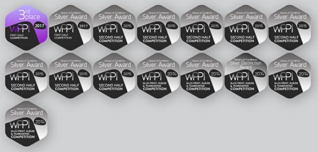award_badges_2017_d1d2d4