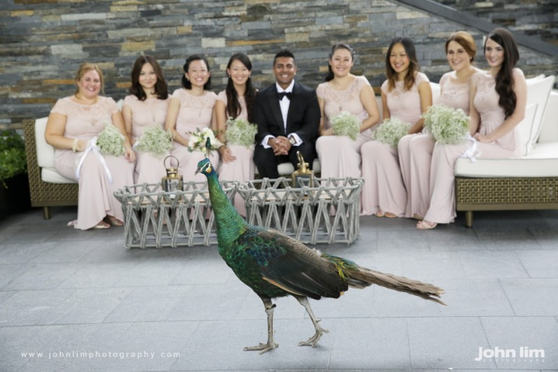 N&M-197-960x640_johnlimphotography_wedding_actual_day_singapore_capella